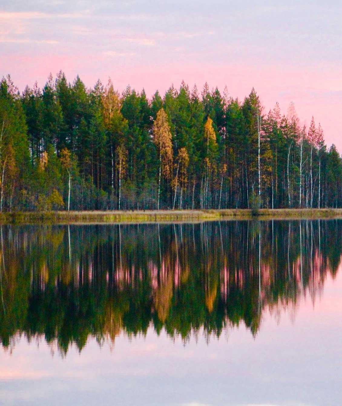 Pieksäwood on suomalainen perheyritys, jonka juuret ovat syvällä suomalaisessa metsässä: puutuotteiden valmistus on aloitettu yli 80 vuotta sitten.