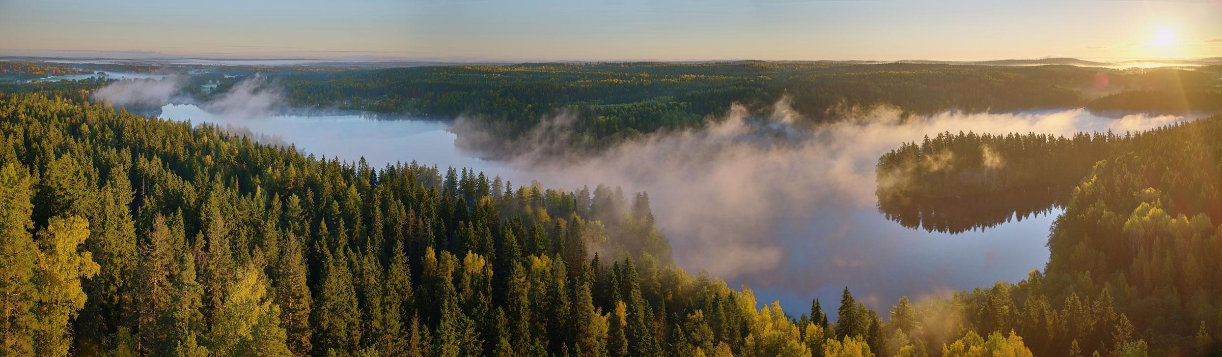 Lämpökäsittely on ilmastoystävällinen keino parantaa puun kestävyyttä.